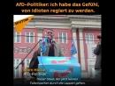 AfD-Politiker: Ich habe das Gefühl, von Idioten regiert zu werden.
