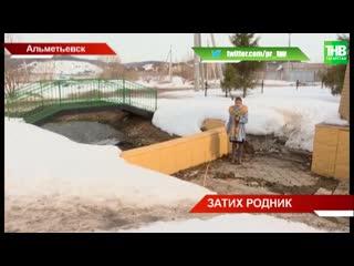 Жители Альметьевска встали на защиту городского родника