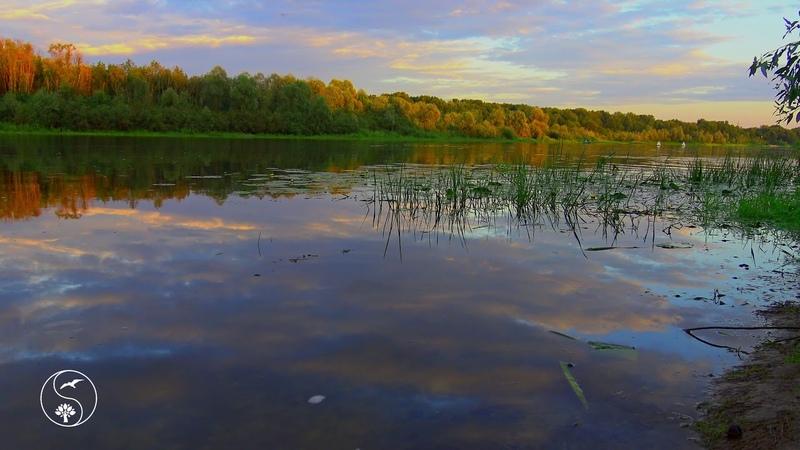 Волшебный пейзаж Вечер смеркалось река на берегу Музыка природа красивое видео релакс
