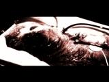 Фрагменты из фильма - Мортал комбат.