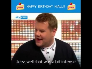 To celebrate @NiallOfficials 25th birthday, lets remember the time he was