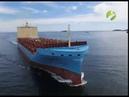Первый успех Ледокольная проводка контейнерного судна по Севморпути завершена