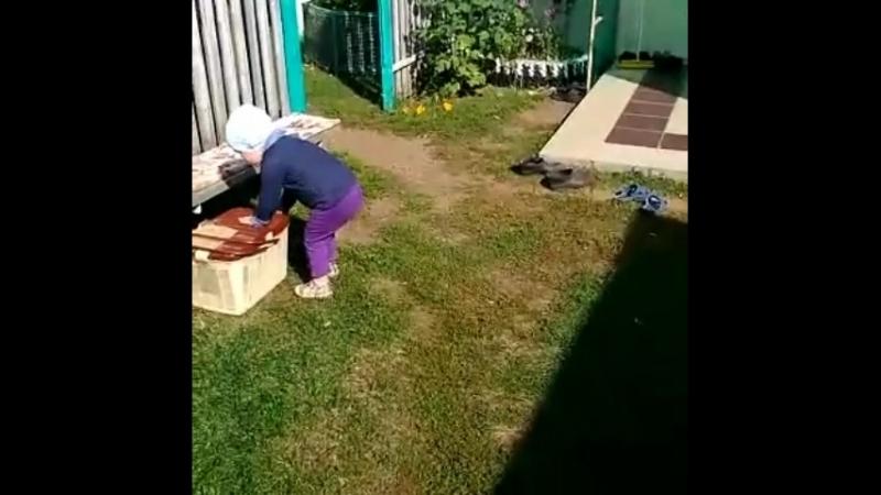Кролика атакует