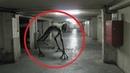 Странные Существа снятые на камеру существа и монстры мистические видео Объяснить Происходящее
