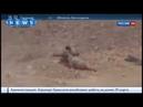 Война в Сирии! ИГИЛ взрывают освободителей Пальмиры