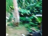 VID_27520115_003904_282.mp4