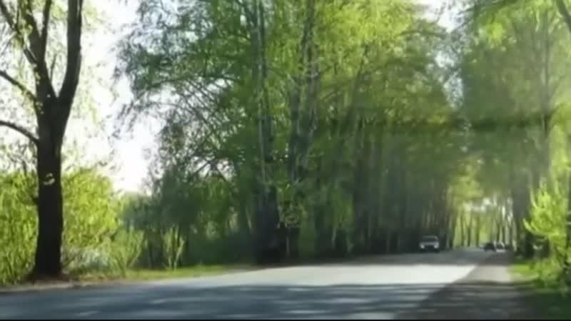 Лименда сегодня и вчера.Видео Майи Моденовой » Freewka.com - Смотреть онлайн в хорощем качестве
