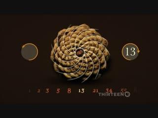 ᴴᴰ Великая тайна математики / The Great Math Mystery (2016) (научно-популярный фильм) HD 1080