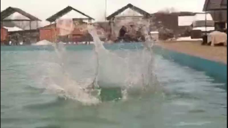в воду не прыгать, не нырять и не брызгаться