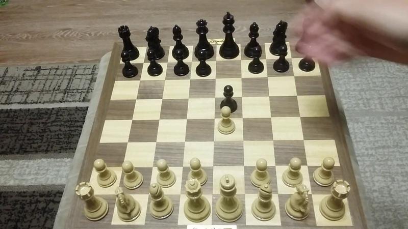 Шахматы. Этот дебют вам понравится. Хитрая ловушка.