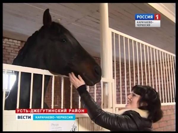 Лошади карачаевской породы в национальной гвардии и полиции королевства Бахрейн