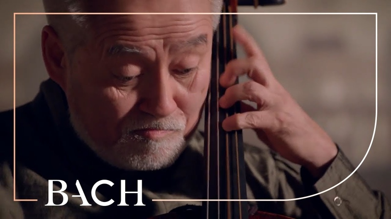 Bach - Cello Suite No. 5 in C minor BWV 1011 - Suzuki   Netherlands Bach Society