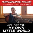Matthew West альбом My Own Little World