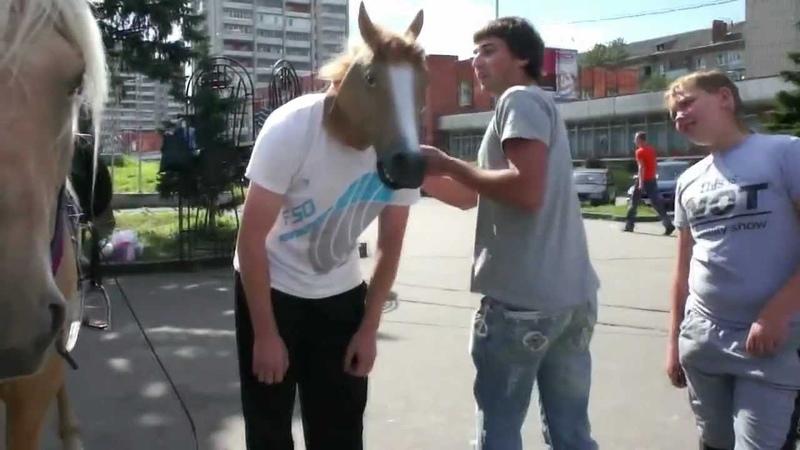 Не в коня корм 3 Харе Кришна))