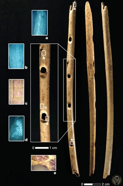 О древних флейтах возрастом более 31 000 лет, найденных в пещере Холе-Фельс на территории Германии Археологи обнаружили на территории Германии четыре древние флейты. В ходе исследования находок
