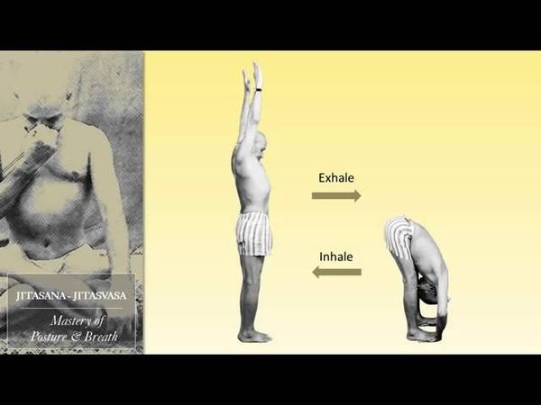 Krishnamacharya His Legacy and Teachings 125th Anniversary Video narrated by A G Mohan
