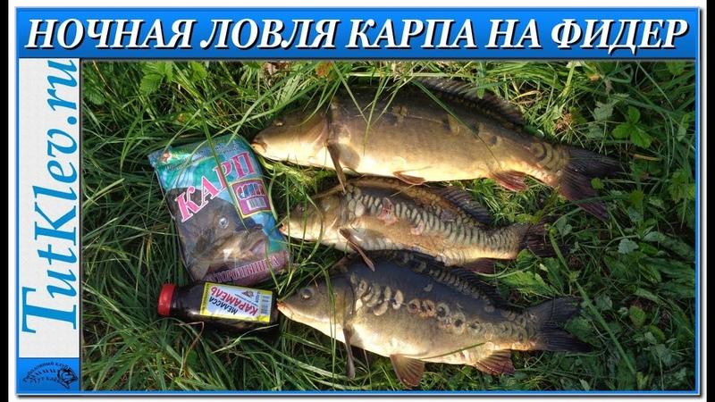 Ловля карпа на фидер. Ночная рыбалка на коммерческом водоеме Запольное.
