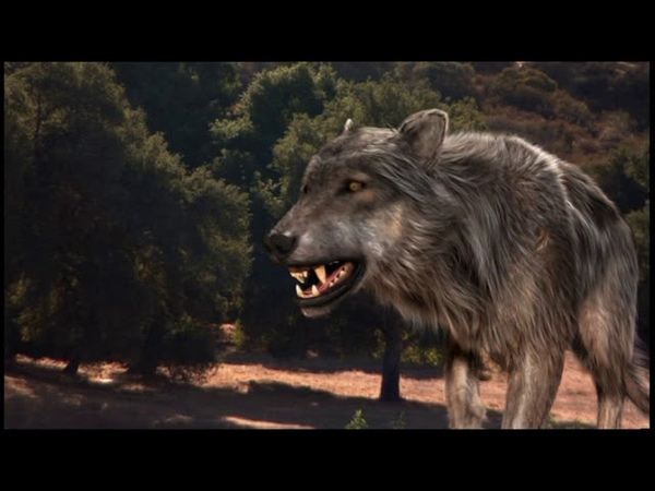 Depredadores Prehistóricos - 03 - Oso de Cara Corta - National Geographic (2007)
