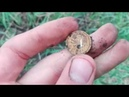 Поиск монет на хуторе с металлоискателем Minelab Equinox 600
