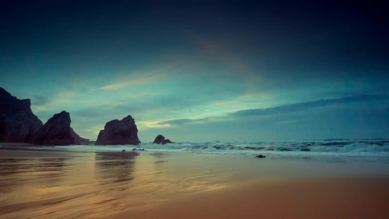 Приморская урса Seashore Ursa
