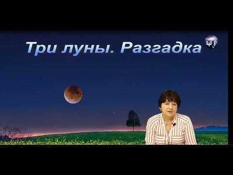 Три луны. Разгадка. Школа Разума 15