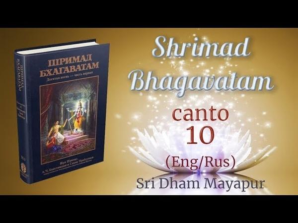 H.G. Pankajanghri prabhu S.B 10.1.26-28 (EngRus) (4K)