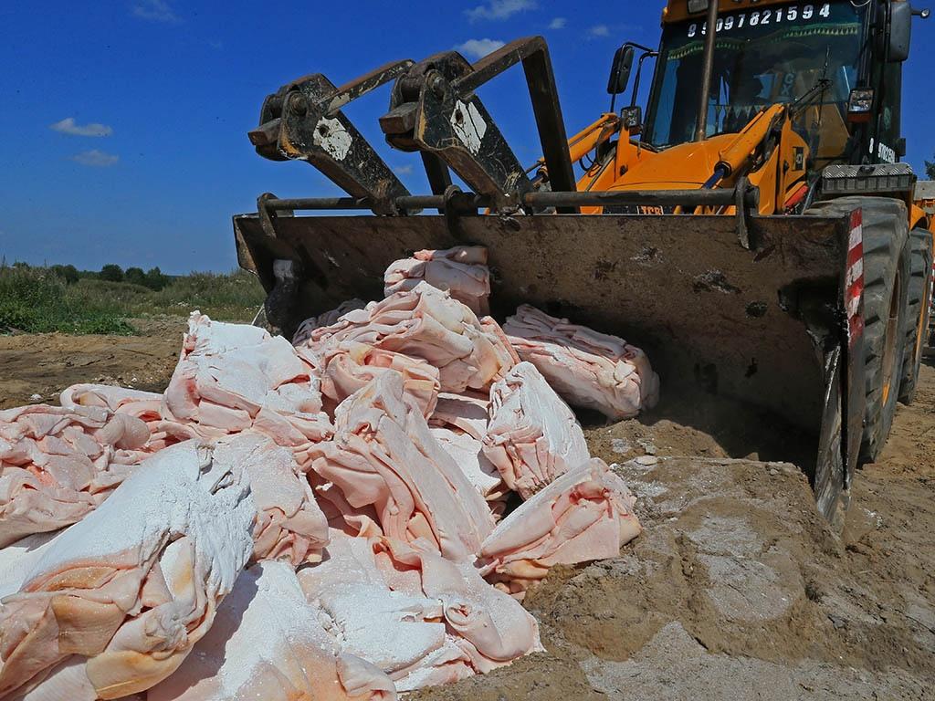 Роспотребнадзор предложил запретить уничтожать пригодные к употреблению продукты
