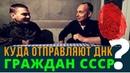 Куда отправляют ДНК граждан СССР Беседа с живым Возрождённый СССР Сегодня