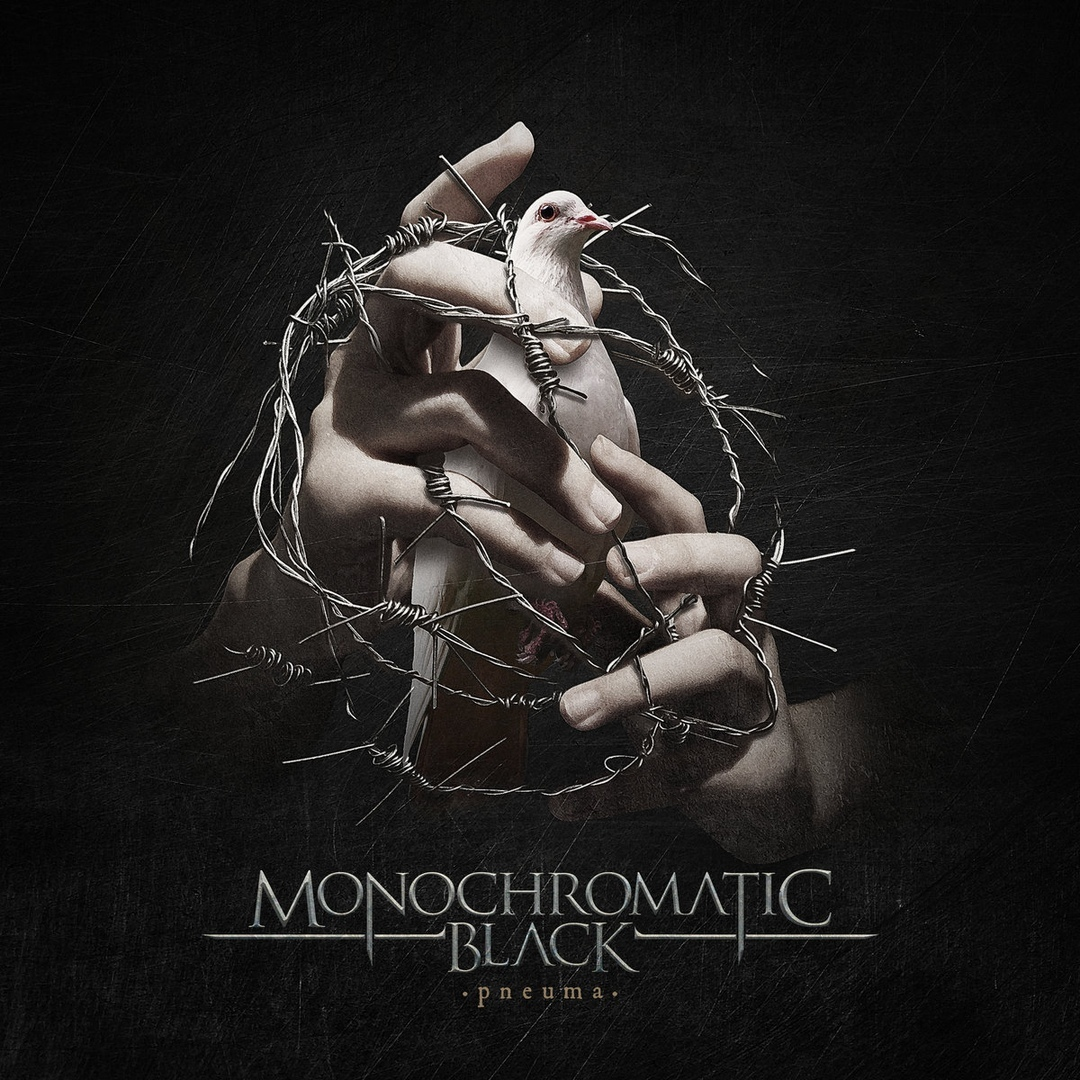 Monochromatic Black - Phosphenes [single] (2019)