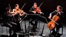 Jean Sibelius Voces intimae string quartet op. 56 casalQuartet