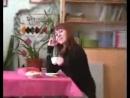 """Видео ролик Команды КВН  """"GirlFriends"""" - Все ради любимого!"""