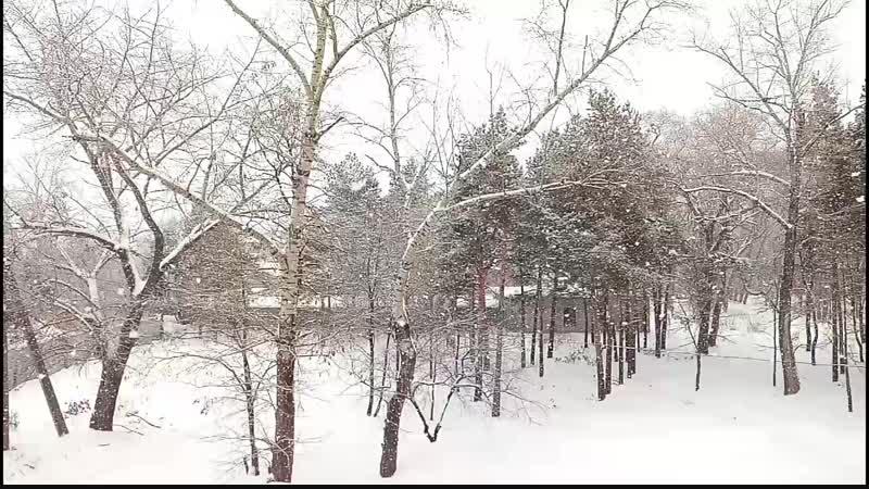 Снегопад_Full HD.mp4