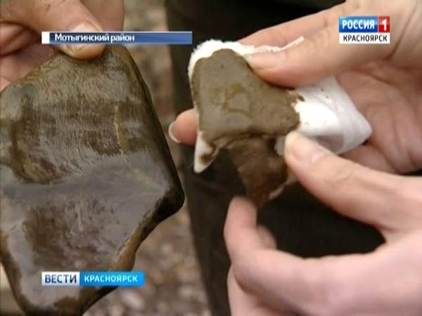 На севере края погибает река Татарка