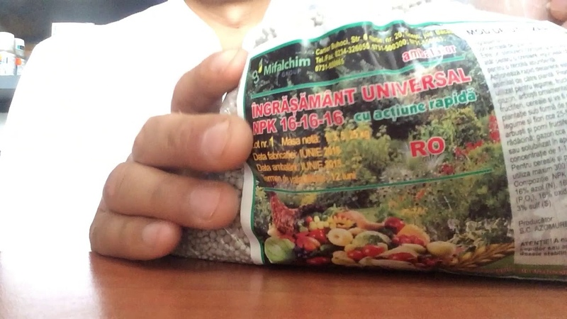 Применение удобрений NPK для овощей, фруктовых деревьев, газонов, цветов,
