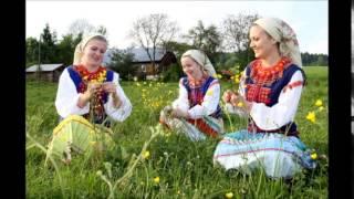 Наша Анічка | Lemko | Ukrainian folk song | Сонячне Закарпаття