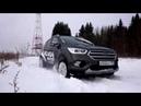 Обзор яркого кроссовера Ford Kuga | Ford Russia