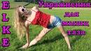 Упражнения для мышц таза Exercises for the muscles of the pelvis Naked yoga