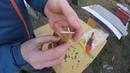 Ранне-весенняя обработка пчёл от клеща Варроа. Быстрый способ постановки пластин в улей.