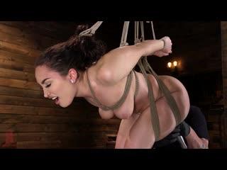 Gabriella paltrova - curvy slut gabriella paltrova in grueling rope bondage and tormented