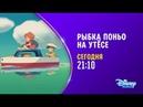 Анимационный фильм Рыбка Поньо на утесе на Канале Disney