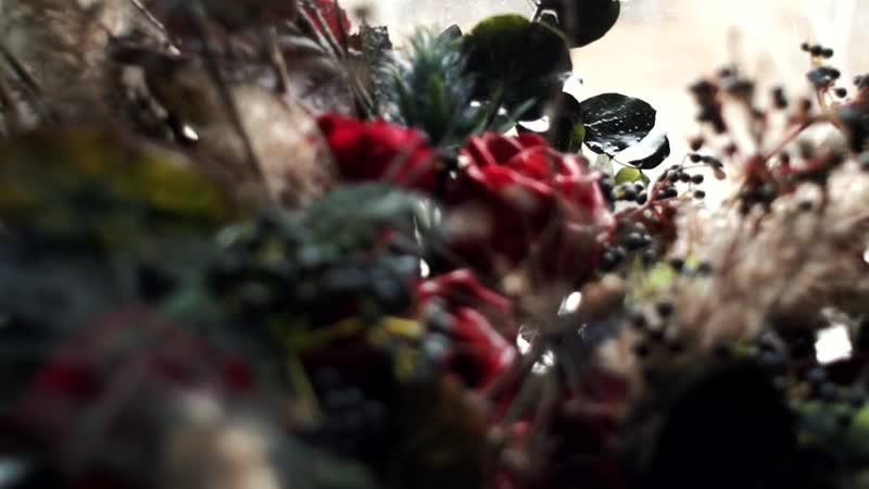 Съемка хэллуин | Фотостудия в Томске STUDIO FLAT 101