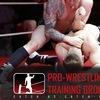 Pro-Wrestling Training Ground