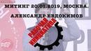 Выступление тов Евдокимова митинг 20 01 2019 Москва
