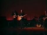 ЗВУКИ МУ - Серый голубь (Live, 1995)