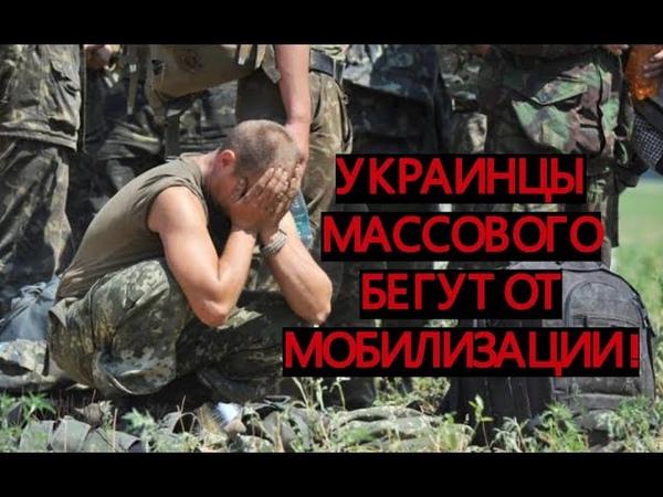 Украинцы массового бегут от мобилизации и военного положения.