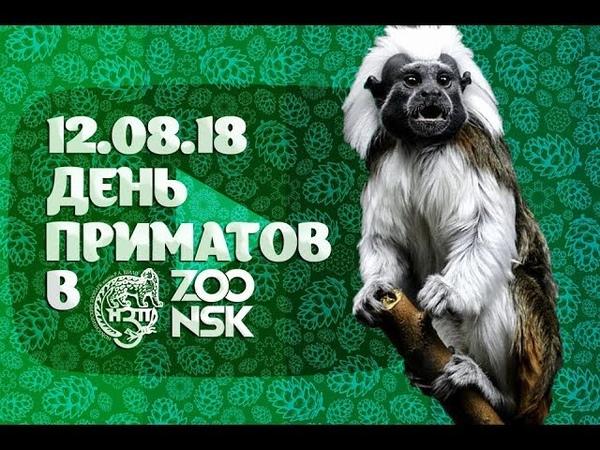 12.08.18 День приматов в Новосибирском зоопарке имени Р.А. Шило