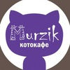 Тайм-кафе «MURZIK» котокафе Нижний Новгород