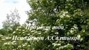 Пройдут года Песню исполняет Альберт Салтыков