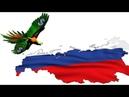 Может ли Америка ФРС править Россией при помощи доллара