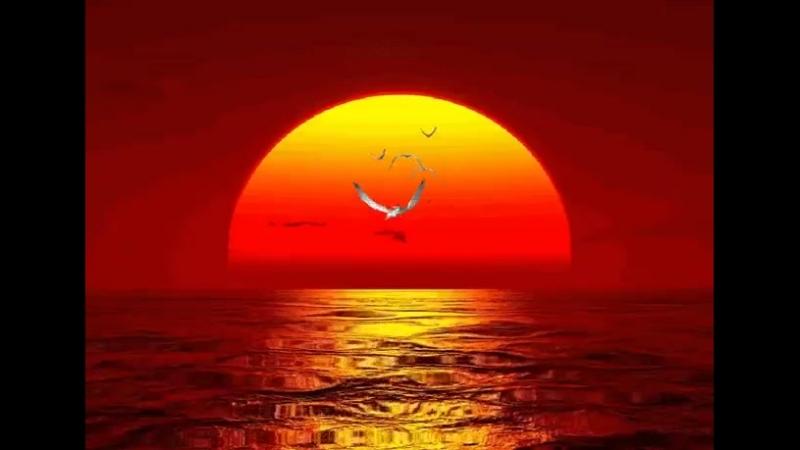 Когда вы просыпаетесь утром, подумайте о том, что вы снова получили драгоценную привилегию быть живым — дышать, думать...